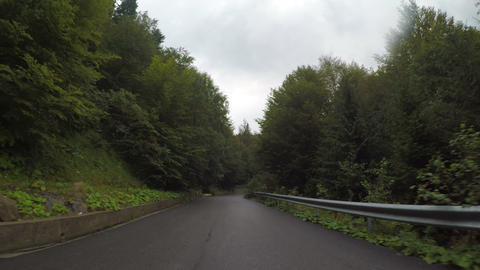 Point of view of car driving through alpine forest on winding road cloudy sky in Live Action