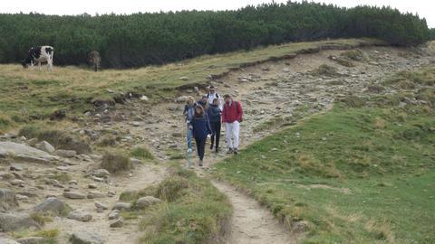 Group of teenage friends walking along hiking trail path enjoying the mountain Footage