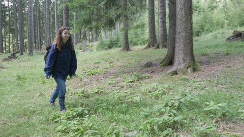 Happy ecologist woman trekking on mountain forest exploring nature and trees Footage