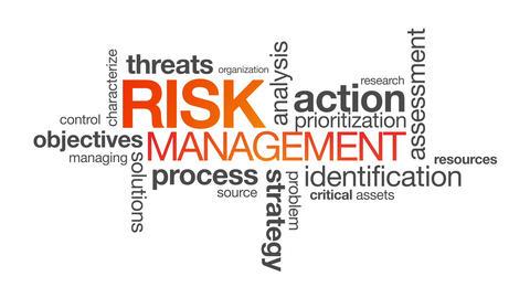 Risk Management Animation