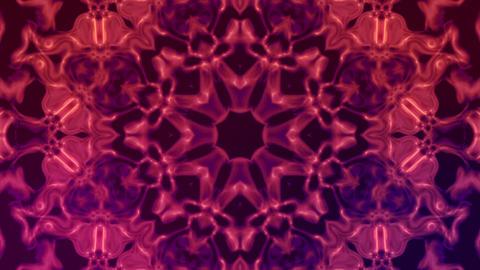 Kaleidoscope Flowers Stock Video Footage