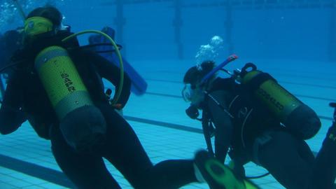 underwater 17 Stock Video Footage