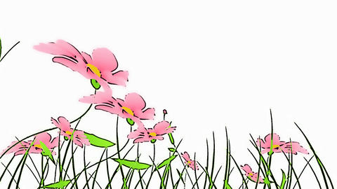 drawing flowers Stock Video Footage