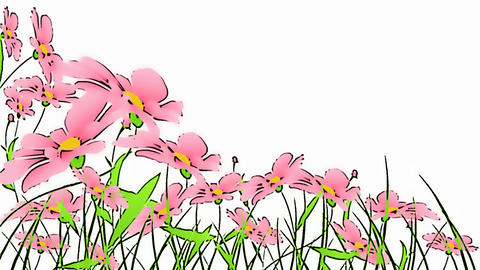 drawing flowers Animation
