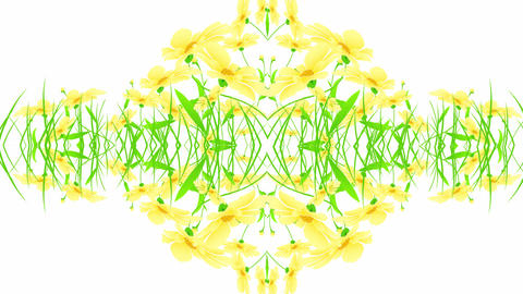 floral designs yellow Stock Video Footage