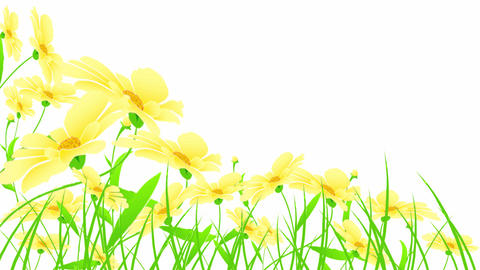 yellow flowers Animation