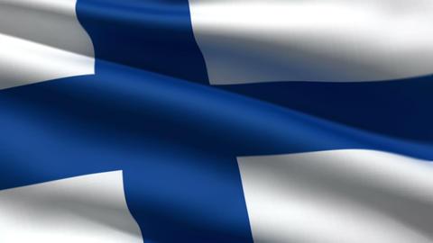 Finnish flag Stock Video Footage
