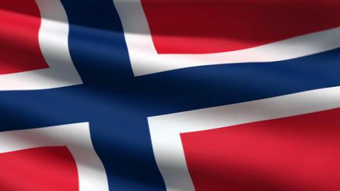 Norwegian flag Stock Video Footage