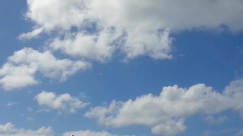 airplane landing in saint marteen caribe Footage
