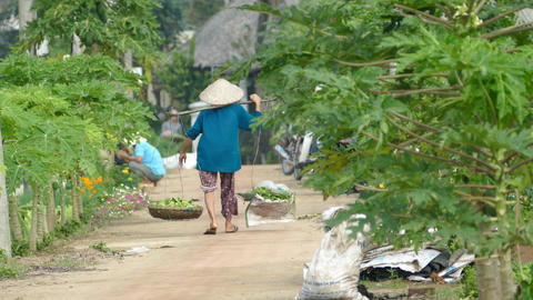 Vietnamese lady walks way at farmland Footage
