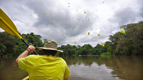 Kayaking in the Amazon Footage