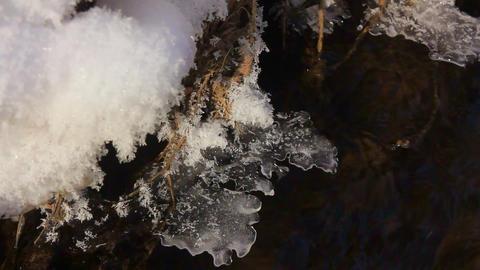 coast of the ice-free winter creek Footage