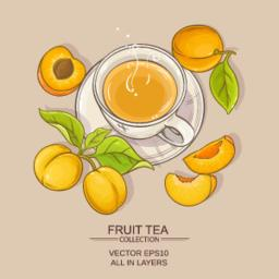 apricot tea illustration Vector
