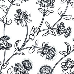 safflower seamless pattern Vector