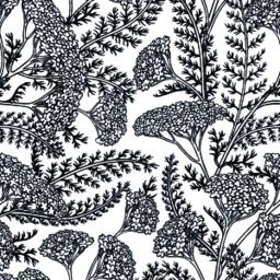 yarrow seamless pattern Vector