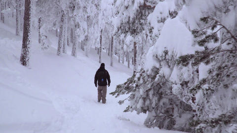 Tracking shot of man entering the freezing nature Footage