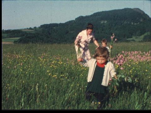 Family picking flowers 2 ライブ動画