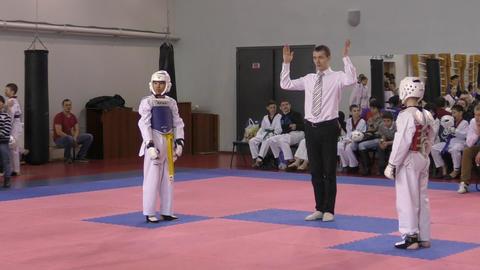 Orenburg, Russia - 27.03.2016: Taekwondo Competitions Among Juniors stock footage