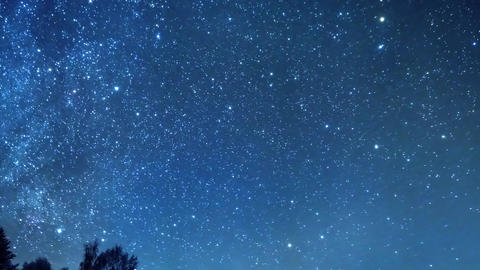 The stars revolve around a polar star in the background of the forest Live Action