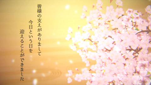結婚式用オープニング 桜 After Effectsテンプレート