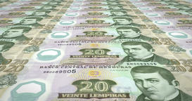 Banknotes of twenty lempira of Honduras rolling, cash money, loop Animation