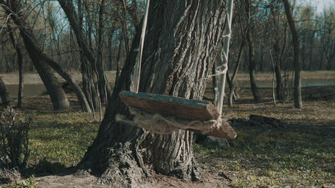 Empty baby swing on the tree Footage
