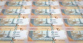 Banknotes of twenty Sudanese pounds of Sudan, cash money, loop Animation