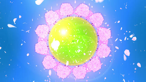 Cherry Trees In Full Bloom On The Hill, Cherry Blossom Circle, CG Animation Animation