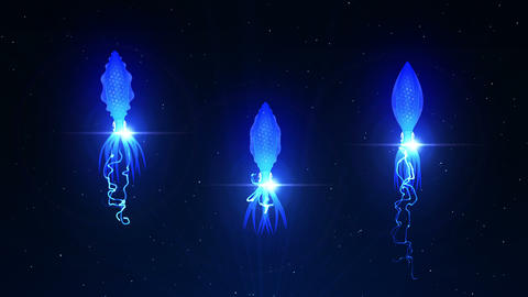 Squid Illuminated With Color Light In The Underwater, CG Animation, Loop CG動画
