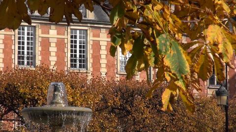 fall at the place des vosges, paris, france, Herbstlaub Places des Vosges Paris Footage