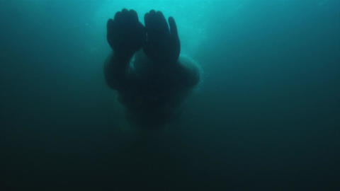 Dive Into The Water Footage