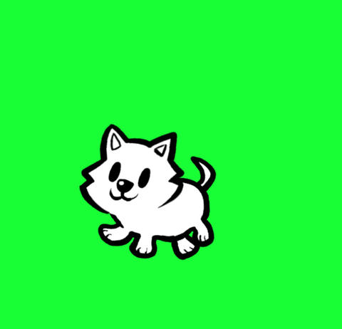 Kitten scampering Animation