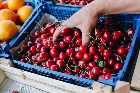 Crop person buying cherry Photo