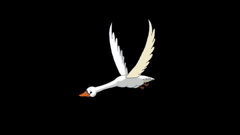 White Swan Flies Alpha Matte Animation