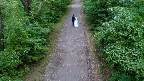 The bride and groom walk along the alley Footage