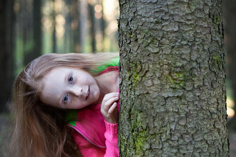 Little girl looks from behind a tree in the forest Photo