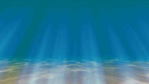 Caustics on the seabed Underwater Footage