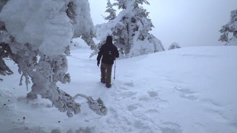 Tracking shot of hiker walking into the beautiful snowy nature Footage