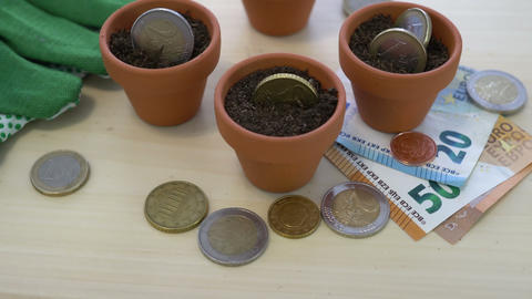 Euro Growing Money in Pots Concept Image