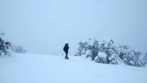 Woman mountaineer walks across a meadow in snowdrift Footage