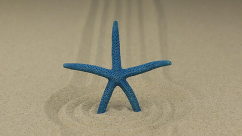 Zoom of a blue starfish standing in a circle of sand Footage