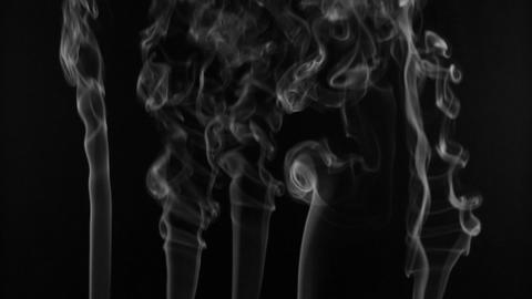 Five lines white smoke on a black background. Beautifully Footage