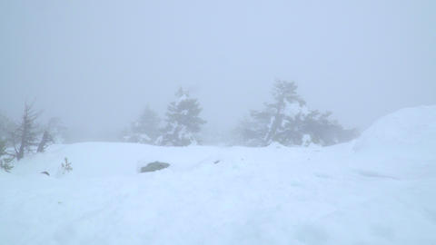Snowy landscape covered in fog Footage