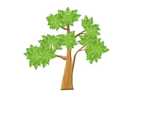 Tree growth Animation