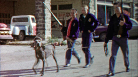 1959: Boys carry guns walking dog in parade on main street downtown Footage