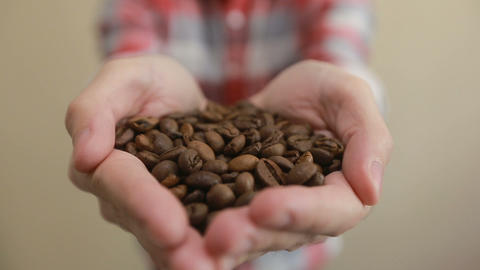 Coffee beans - man showing medium roasted coffee beans handful. man holding coff Footage