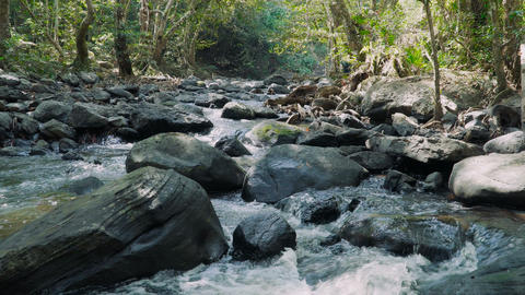 Jungle landscape with flowing river Footage