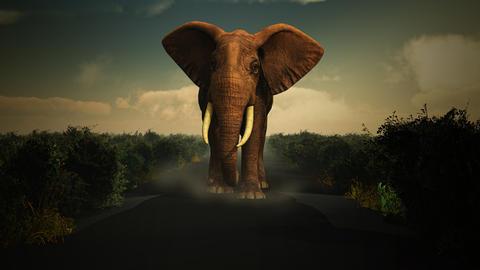 3D elephant walking towards camera Photo