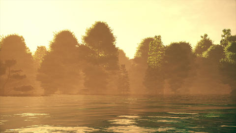 4K High Current River Flood Forest in the Sunset Cinematic 3D Animation 1 Animation