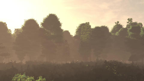 4K Lush Meadow and Forest Cinematic 3D Animation Flat 1 Animation